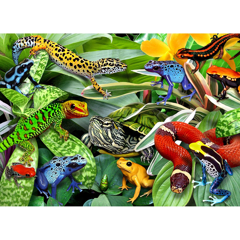 1660 Reptiles Puzzles